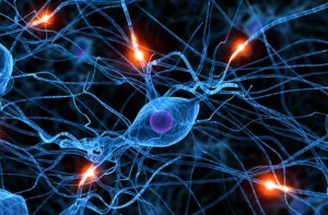brain-memory-neurons-670-1